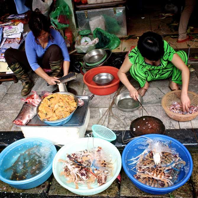 Hanoi- Einkaufen- nur die Frische zählt