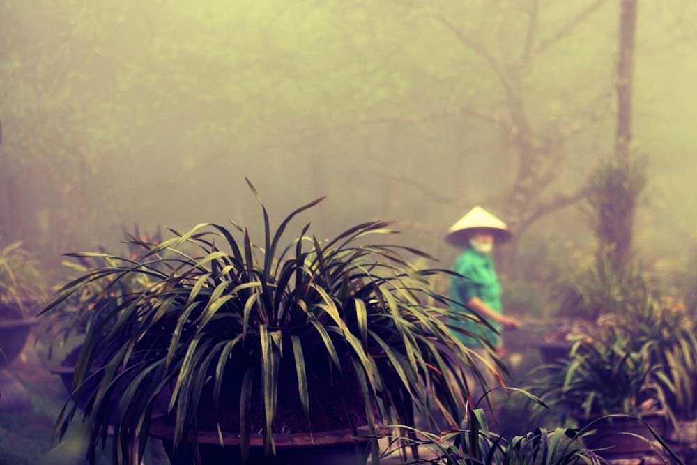 Sapa Rundreise Vietnam
