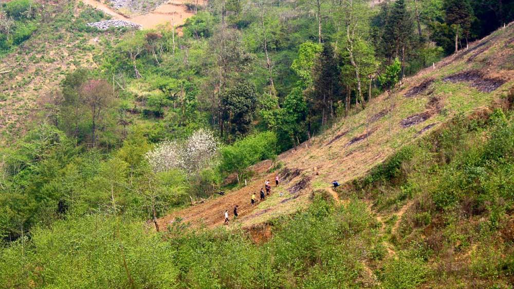 Sapa- Eine Reisterrasse entsteht...
